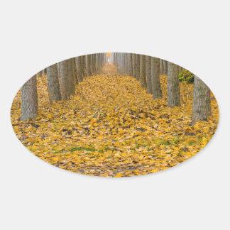 Sticker Ovale _MG_3099aReflection à la ferme d'arbre de peuplier