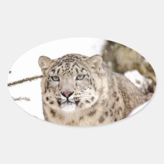 Sticker Ovale neige-léopard