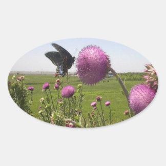 Sticker Ovale Papillon grand de prairie d'herbe sur le chardon