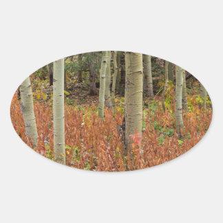 Sticker Ovale Plancher coloré de forêt d'Aspen