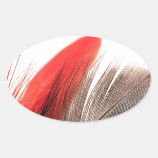 Sticker Ovale Plume rouge