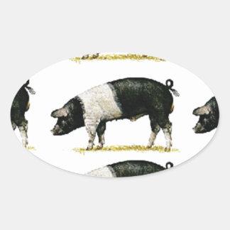 Sticker Ovale porcs dans une rangée