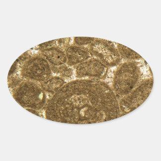 Sticker Ovale Section mince de chaux paléozoïque sous la MICR