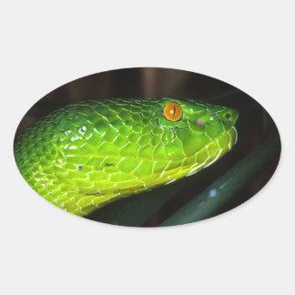 Sticker Ovale Serpent de vipère de la mine de Stejneger vert