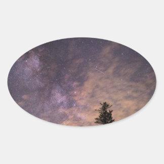 Sticker Ovale Silhouette des arbres la nuit