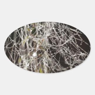 Sticker Ovale Toiles d'araignée avec des baisses de rosée