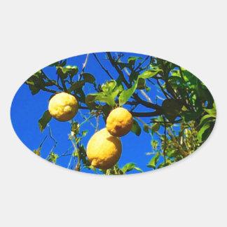 Sticker Ovale Trois citrons siciliens