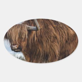 Sticker Ovale Yaks de Brown sur le vert et le champ d'herbe de