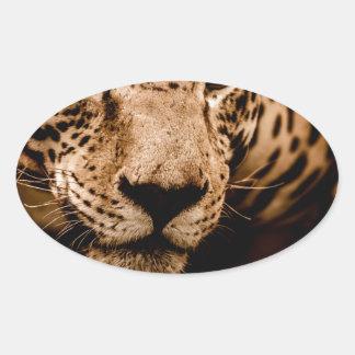 Sticker Ovale yeux de égrappage de l'eau de jaguar