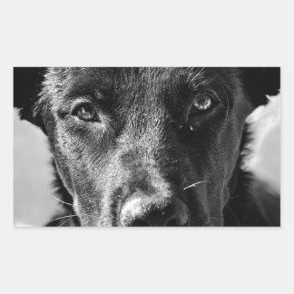 Sticker Rectangulaire Animal familier canin de chien