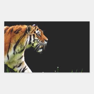Sticker Rectangulaire Approche de tigre - illustration d'animal sauvage