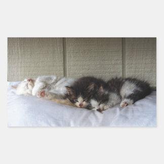 Sticker Rectangulaire Beautés de sommeil