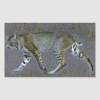 Sticker Rectangulaire Chat sauvage