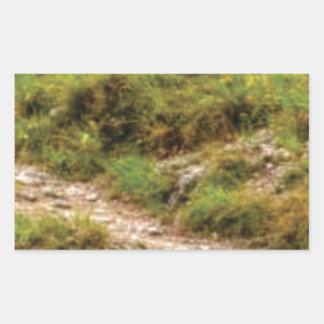 Sticker Rectangulaire chemin herbeux