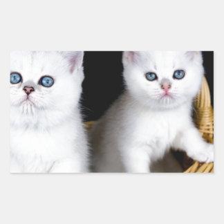 Sticker Rectangulaire Deux chatons blancs dans le panier sur