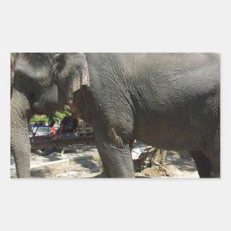 Sticker Rectangulaire Éléphants en Thaïlande