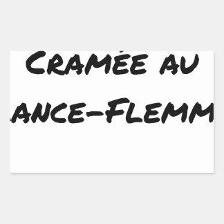 Sticker Rectangulaire ÉNERGIE CRAMÉE AU LANCE-FLEMME - Jeux de mots