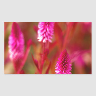 Sticker Rectangulaire Fleur en pastel
