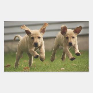 Sticker Rectangulaire Fonctionnement jaune de chiots de Labrador