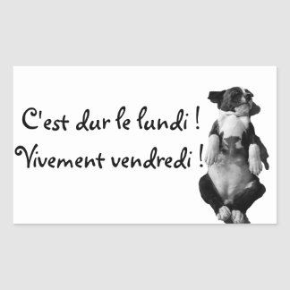 Sticker Rectangulaire Gamme Amstaff - Vogue