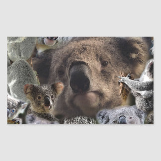 Sticker Rectangulaire Koala heureux