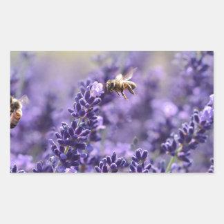 Sticker Rectangulaire Lavande de ressort avec floral pourpre d'abeilles