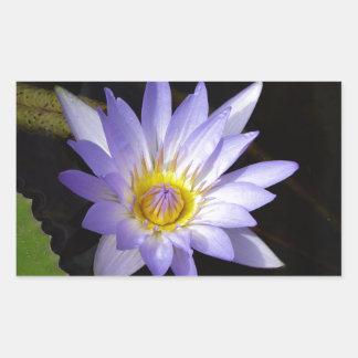 Sticker Rectangulaire lotus bleu du Nil