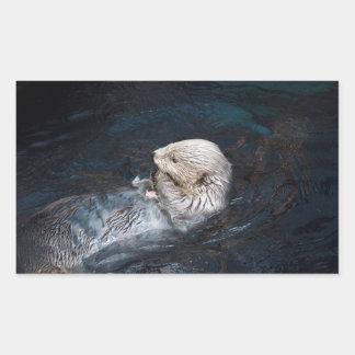 Sticker Rectangulaire Loutre mangeant le zoo sauvage aquatique de nature
