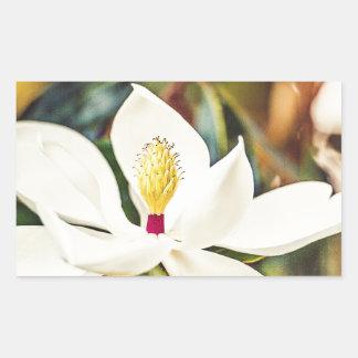 Sticker Rectangulaire Magnolia magnifique du Mississippi