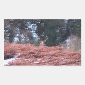 Sticker Rectangulaire Mâle sur une colline