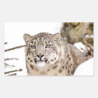 Sticker Rectangulaire neige-léopard