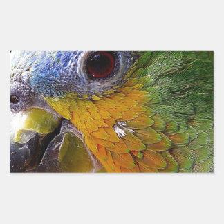 Sticker Rectangulaire Oiseau exotique de vert d'oiseau d'animaux