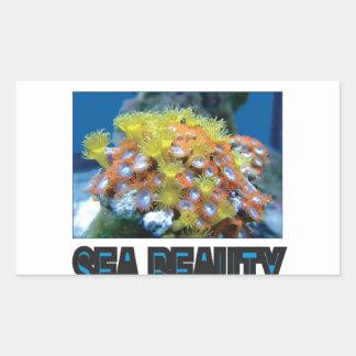 Sticker Rectangulaire pile de beauté de mer