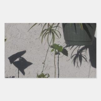 Sticker Rectangulaire plantes et ombres de matin