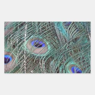 Sticker Rectangulaire plumes de paon