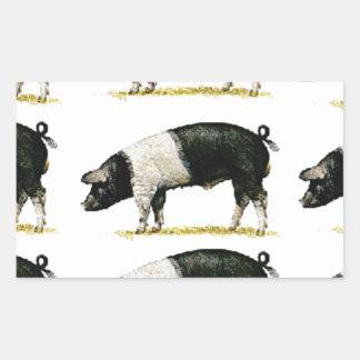 Sticker Rectangulaire porcs dans une rangée