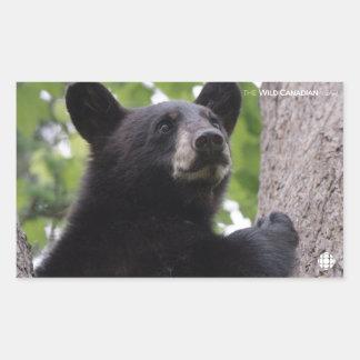 Sticker Rectangulaire Ressort - ours noir