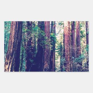 Sticker Rectangulaire Séquoias de Californie