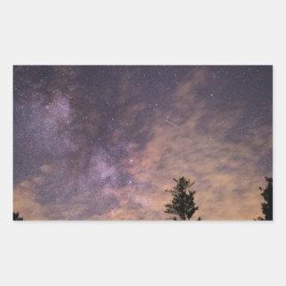 Sticker Rectangulaire Silhouette des arbres la nuit