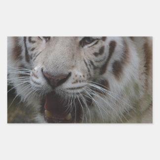 Sticker Rectangulaire Tigre blanc