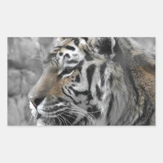 Sticker Rectangulaire Tigre blanc nature animal sauvage