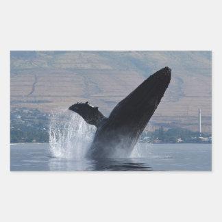 Sticker Rectangulaire violation de baleine de humback