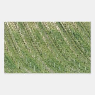 Sticker Rectangulaire Vue pittoresque de flanc de coteau de roulement
