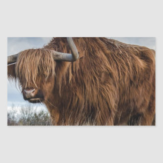 Sticker Rectangulaire Yaks de Brown sur le vert et le champ d'herbe de