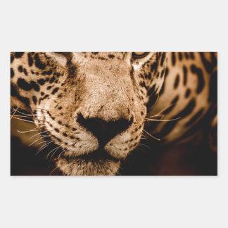 Sticker Rectangulaire yeux de égrappage de l'eau de jaguar