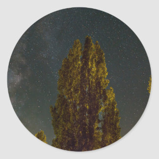 Sticker Rond Arbres sous la manière laiteuse une nuit étoilée