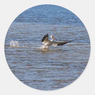 Sticker Rond Atterrissage de pélican