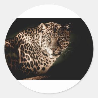 Sticker Rond Cadeaux de tigre