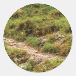 Sticker Rond chemin herbeux
