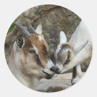 Sticker Rond Chèvre affectueuse de mère et de bébé